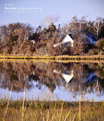 Late Fall Reflection Print by Vicki Jauron