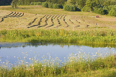 Maine Farms Photograph - Late Summer Hay Being Harvested In Maine Canvas Poster Print by Keith Webber Jr