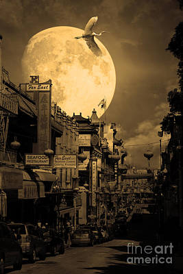 Snowy Night Photograph - Legend Of The Great White Phoenix Of Chinatown . 7d7172 . Sepia by Wingsdomain Art and Photography