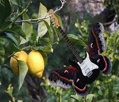 Lepidopterans Digital Art - Lemons For U2  by Eric Kempson