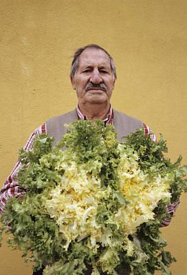 Lettuce Photograph - Lettuce Harvest by Carlos Dominguez