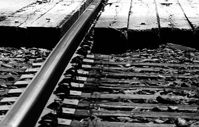 Life On The Line Print by JC Photography and Art