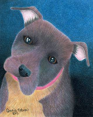 Animal Shelter Drawing - Lilly by Annie Nelson