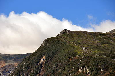 Photograph - Lions Head I 2011 by Frank LaFerriere