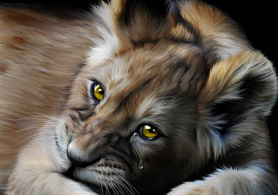 Cat Digital Art - Little Baby Lost by Julie L Hoddinott