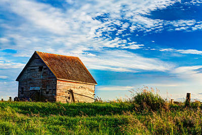 Little Shed On The Prairie Print by Matt Dobson