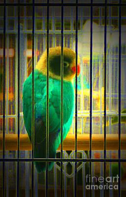 Lovebird Digital Art - Longing To Be Free by Maureen Ida Farley
