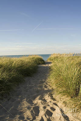Water Photograph - Looking At Grass Covered Sand Path On A Dune Leading To Water by Christopher Purcell