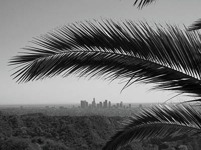 Los Angeles Skyline From Hollywood Hills Print by Mike Shaffer