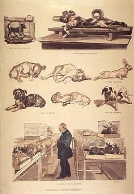 Louis Pasteur 1822-1895 In Laboratory Print by Everett