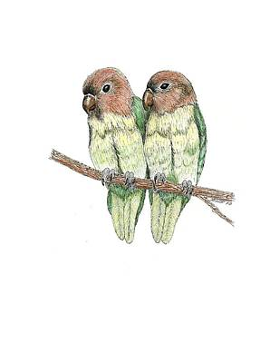 Lovebird Drawing - Lovebirds by Richard Freshour