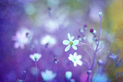 Lovestruck In Purple Print by Amy Tyler