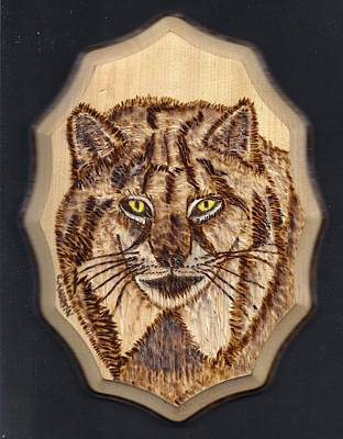 Lynx Print by Clarence Butch Martin