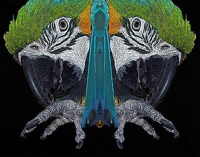 Macaw Print by Ernie Echols