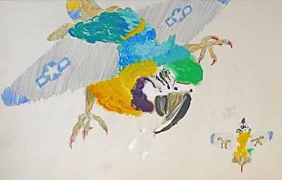 Cockatoo Drawing - Macaw Plane by Virginia Stuart