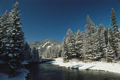 Gallatin River Photograph - Madison River, Gallatin National by Raymond Gehman