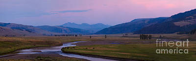 Wildlife Photograph - Magenta Twilight -- Lamar Valley by Charles Kozierok