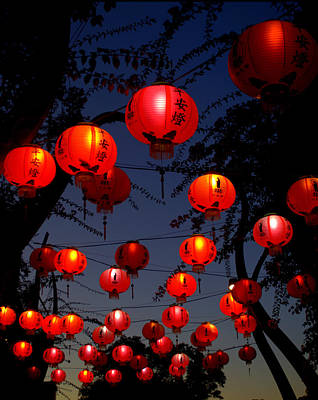 Paper Lantern Photograph - Magic Lanterns For Buddha Birthday by Nikki Yetman