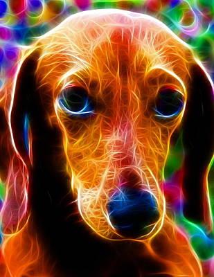 Dachshund Puppy Digital Art - Magical Dachshund by Paul Van Scott