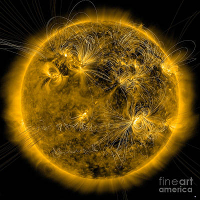 Magnetic Field Lines On The Sun Print by Stocktrek Images