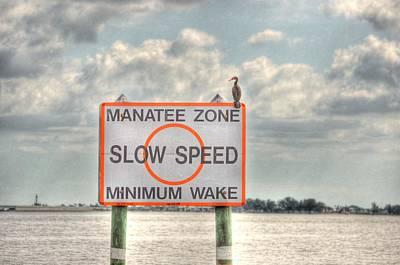 Digital Art - Manatee Zone by Barry R Jones Jr