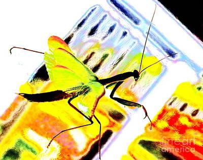 Mantis Print by Xn Tyler