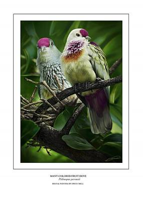 Tonga Digital Art - Many-colored Fruit Dove by Owen Bell