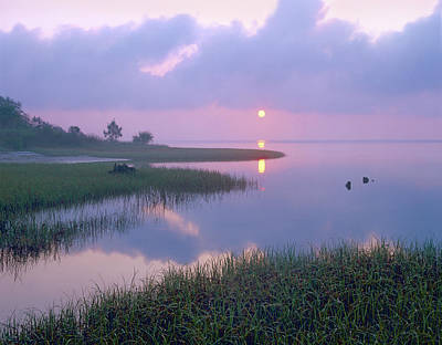 Marsh At Sunrise Over Eagle Bay St Print by Tim Fitzharris