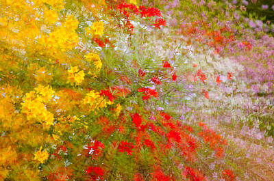 May Impression Print by Bobbie Climer