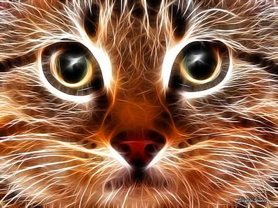 Kitten Digital Art - Meow by Stephen Younts