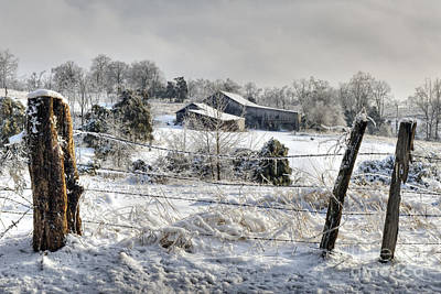 Indiana Winters Photograph - Midwestern Ice Storm - D004825 by Daniel Dempster