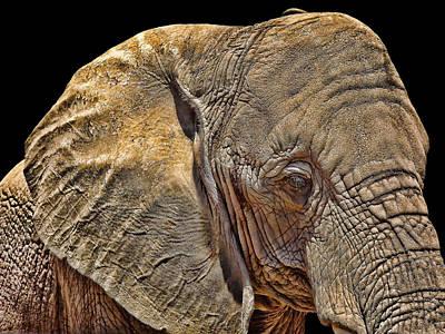 Mighty Morphin' Power Elephant Print by Lourry Legarde