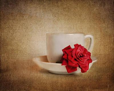 Antique Photograph - Miniature Red Rose Iv by Jai Johnson