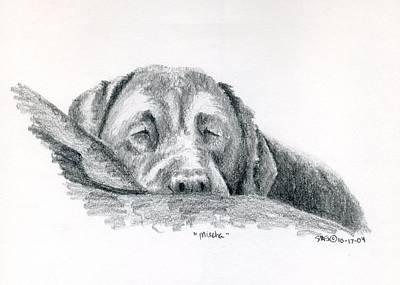 Animal Drawing - Mischa Sleeping by Sherri Strikwerda