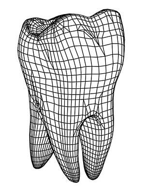 Molar Tooth Print by Pasieka