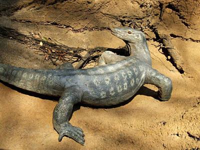 Monitor Lizard At Saint Louis Zoo Print by David Edwards