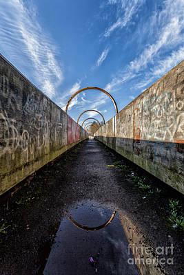 Colour Images Photograph - Monkey Bridge by John Farnan