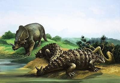 Dinosaur Painting - Monoclonius And Scolosaurus by English School