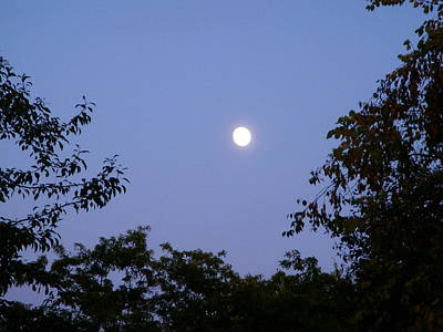 Moon Print by Aimee L Maher Photography and Art Visit ALMGallerydotcom