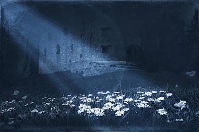 Crooked Mixed Media - Moon Light Daisies by Svetlana Sewell