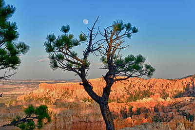 Moon Over Bryce Canyon Print by Greg Norrell