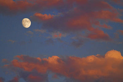 Galleries On Line Photograph - Moon Sunset by James BO  Insogna