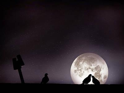 Moon With Love Pigeon Print by Mhd Hamwi