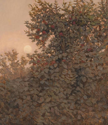 Moonrise In The Orchard Print by Peter  Campbell