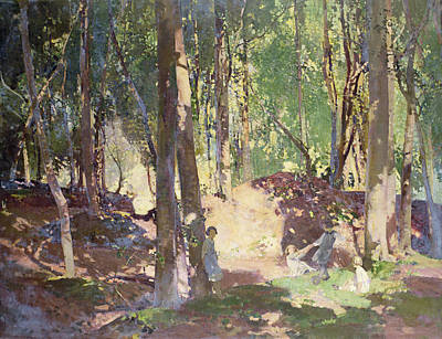 Morning In The Woods Print by Harry Watson