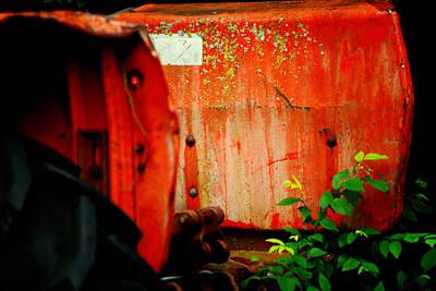Moss And Rust V Print by Toni Hopper