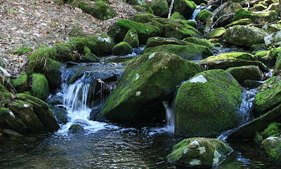 Water Photograph - Moss Overflow by Neal  Eslinger