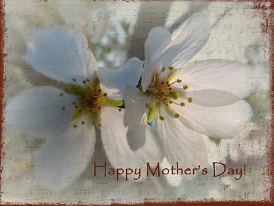 Mothers Day Blossoms Print by Cindy Wright