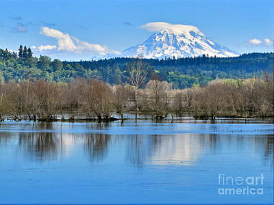 Nature Photograph - Mount Rainier From Nisqually Delta by Sean Griffin