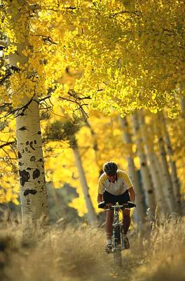 Mountain Biking Through A Grove Print by Bill Hatcher